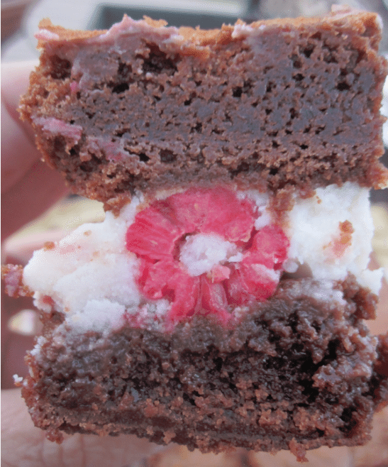 raspberry ice cream sandwiches 5