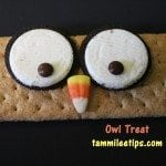 Owl Treat
