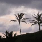 Maui Camping Sunset