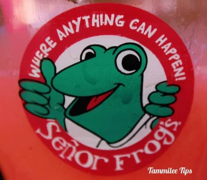 Senor Frogs Cabo San Lucas lbld