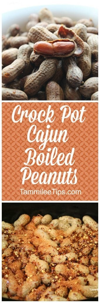 How to make Spicy Crock Pot Cajun Boiled Peanuts Recipe! This slow cooker recipe is super easy to make and tastes amazing!