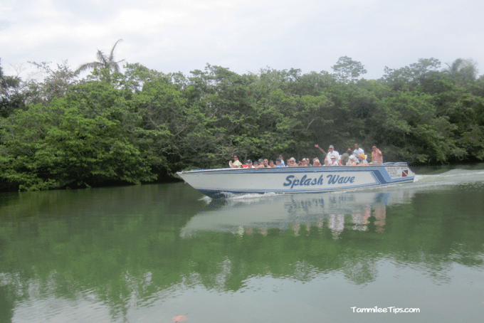 Belize-river-cruise-to-belize-City-Boat.png