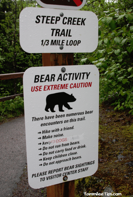 Golden-Princess-Juneau-Mendenhall-Glacier-Bear-Sign.png