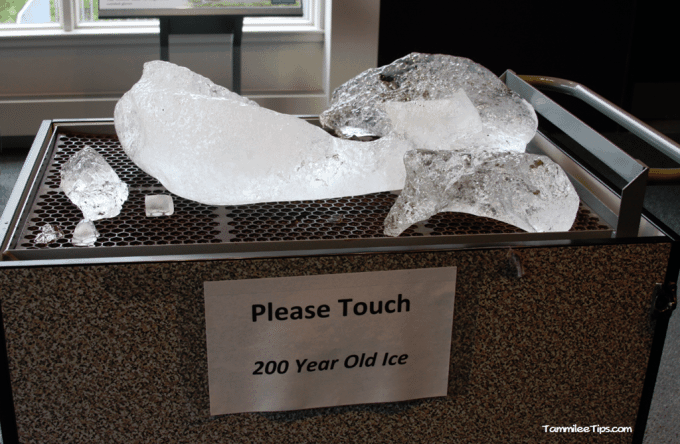 Golden-Princess-Juneau-Mendenhall-Glacier-Visitor-Center-Glacial-Ice.png
