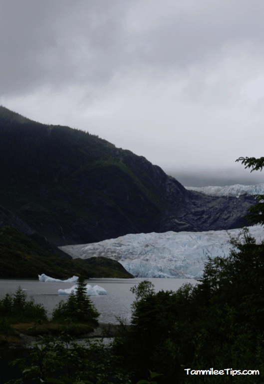 Golden-Princess-Juneau-Mendenhall-Glacier-overview.png