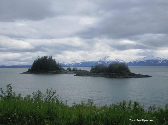 Golden-Princess-Juneau-Water.png