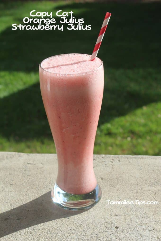 Copy Cat Orange Julius Strawberry Julius Tammilee Tips