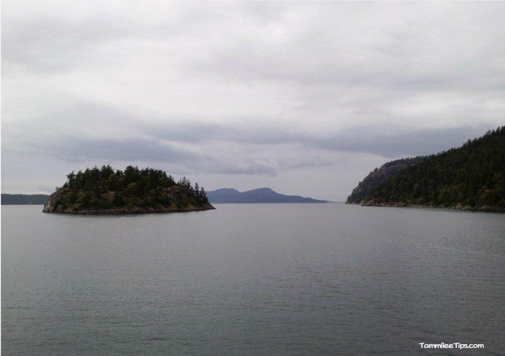 Washington State Ferry 4