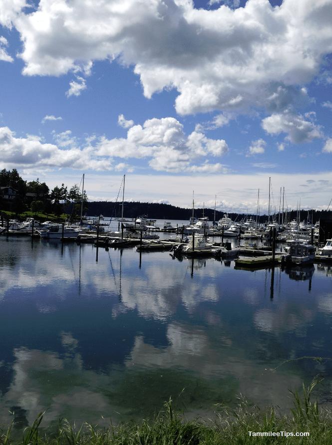 Roche Harbor Marina