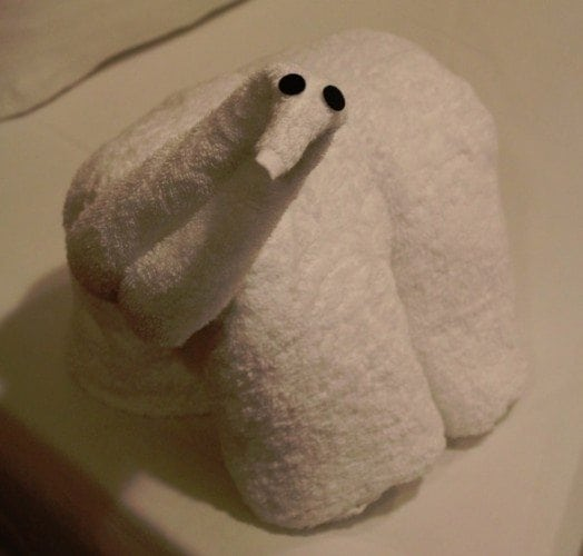 Carnival Breeze Towel Animal Dinosaur