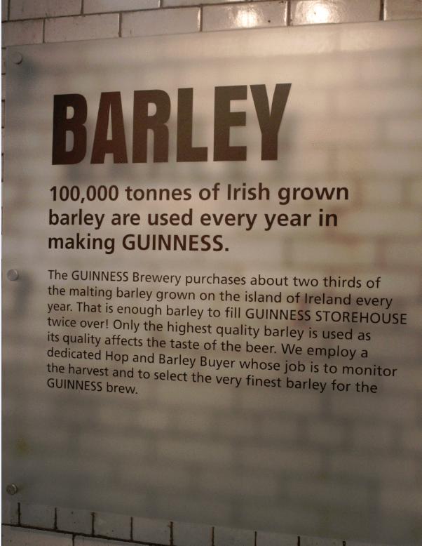 Guiness Storehouse Dublin Barley