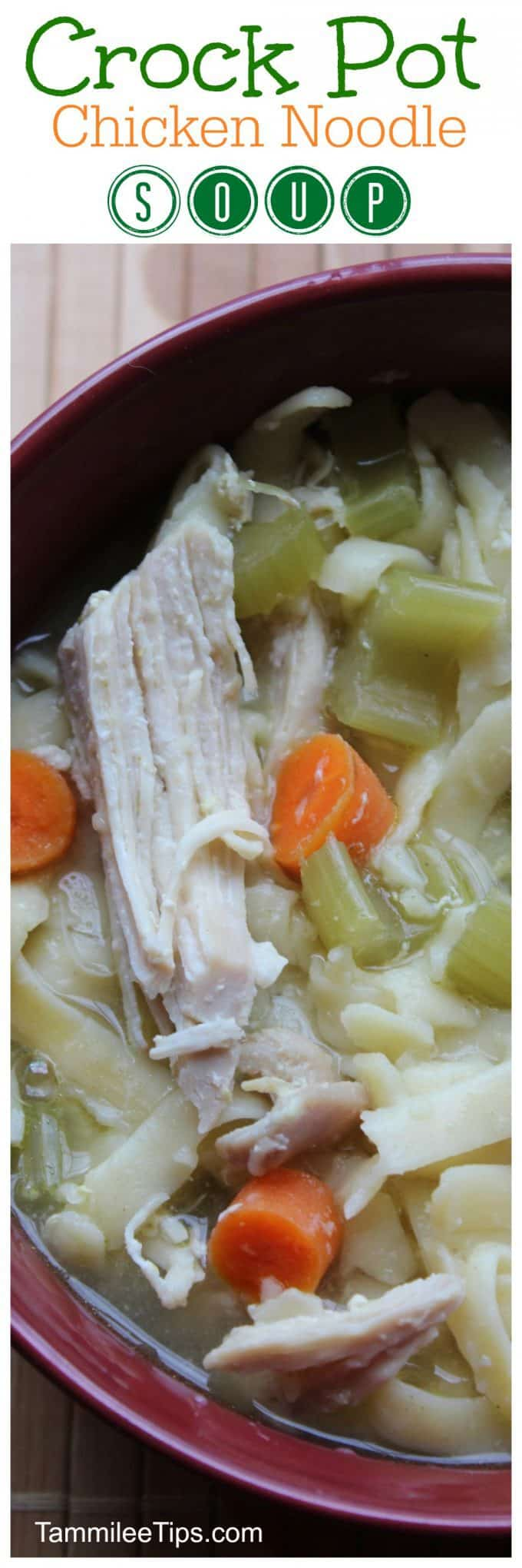 Easy Homemade Slow Cooker CrockPot Chicken Noodle Soup Recipe! The crock pot does all the work and you have a family meal that is the perfect winter comfort food.