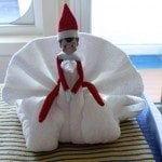 Kona Carnival Breeze Towel Animal Swans