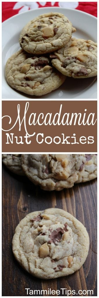 Easy Macadamia Nut Cookies Recipe! These chewy cookies are truly delicious! Perfect for Christmas, Holiday parties or a sweet dessert. Add in white chocolate for extra chocolate goodness.
