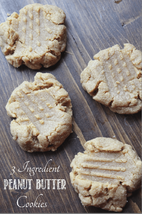 3 Ingredient Peanut Butter Cookies Tammilee Tips