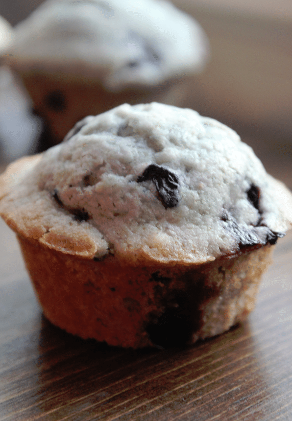 Fantastic Blueberry Muffin Recipe