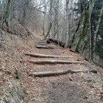 appalatian-trail.jpg
