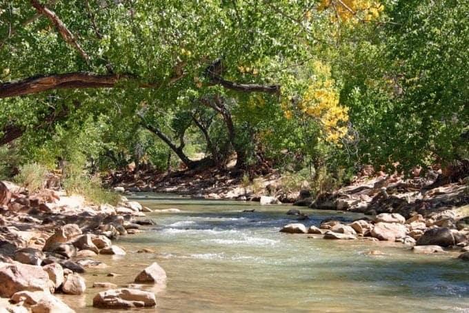 virgin-River-in-fall.jpg