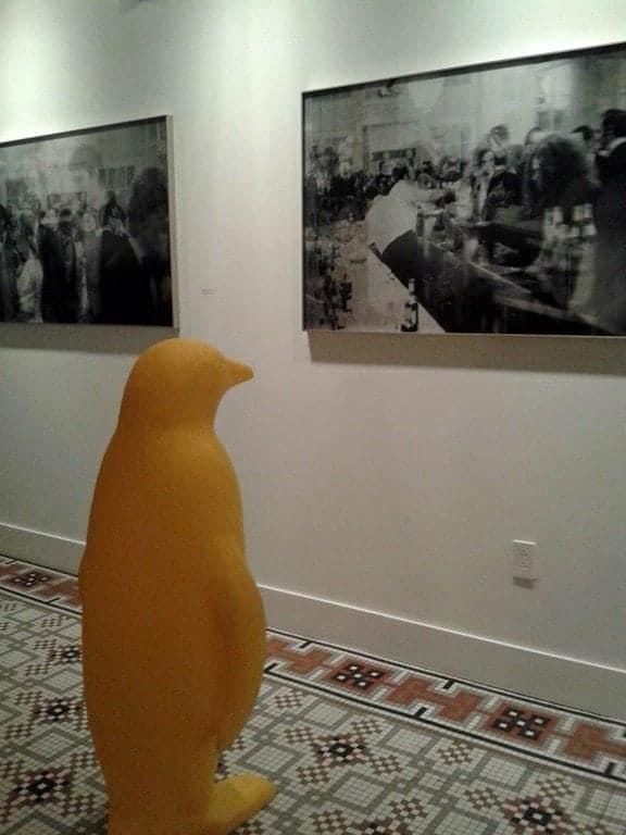 penguin-apprecriating-art.jpg