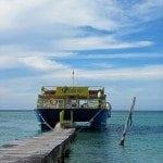 catamaran docked