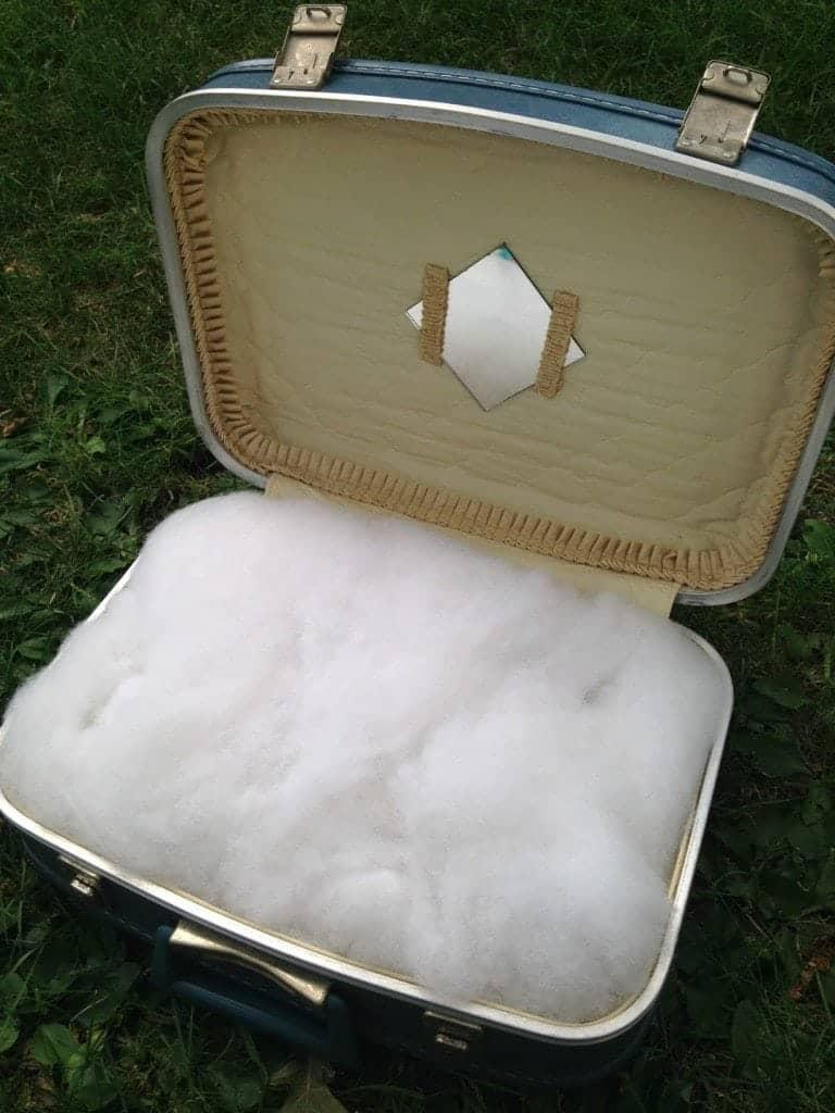Super Cute DIY Suitcase Pet Bed Step 1