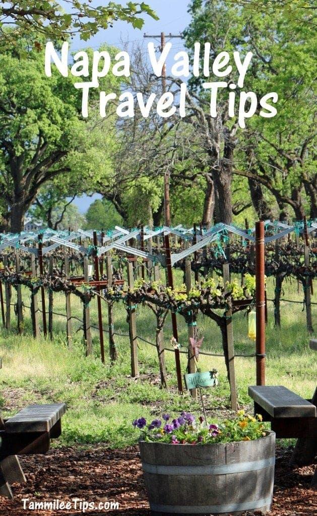 Napa Valley Travel tips