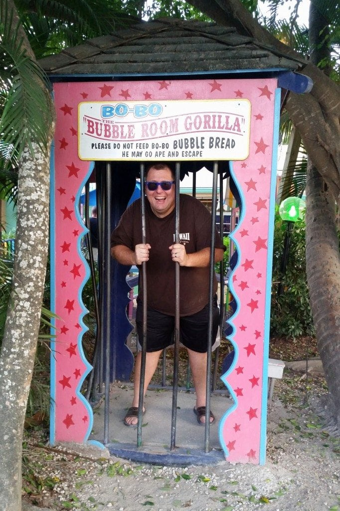 Top 10 Things To Do On Sanibel And Captiva Island