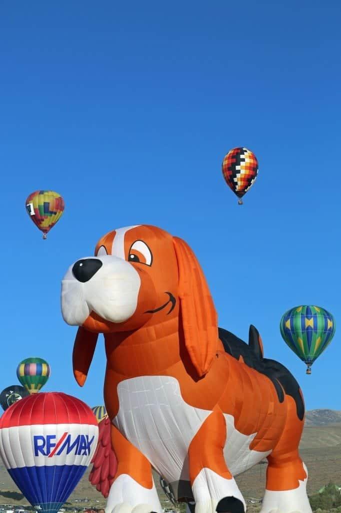 fetch Reno Hot Air Baloon Race