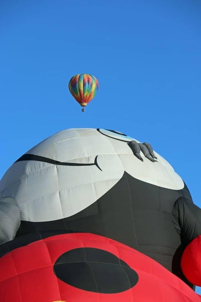 ladybug baloon Reno Hot Air Baloon Wash