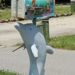 parrot and dolphin mailbox Sanibel