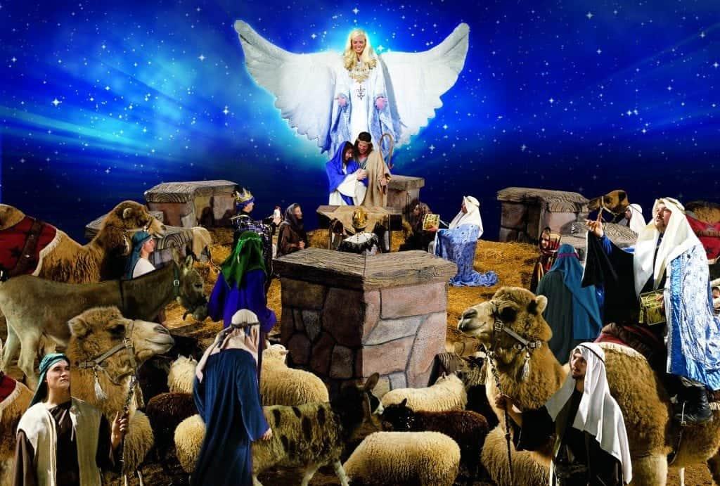 Dixie Stampede Nativity
