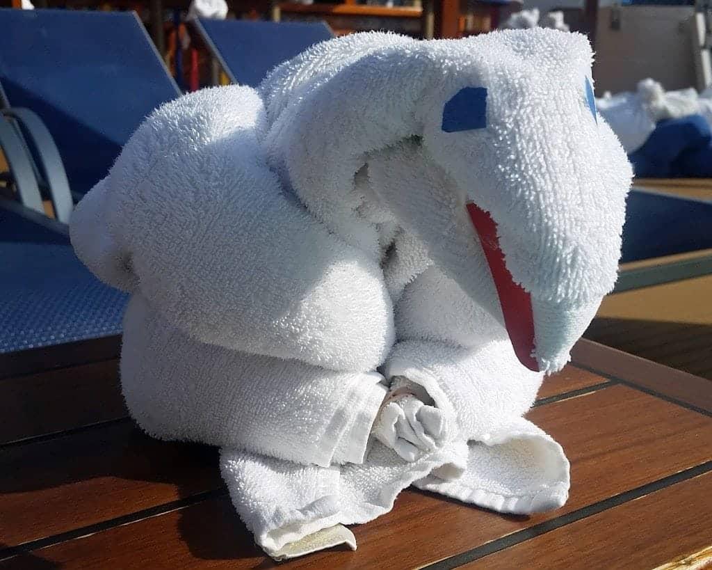 parrot towel animal carnival sunshine
