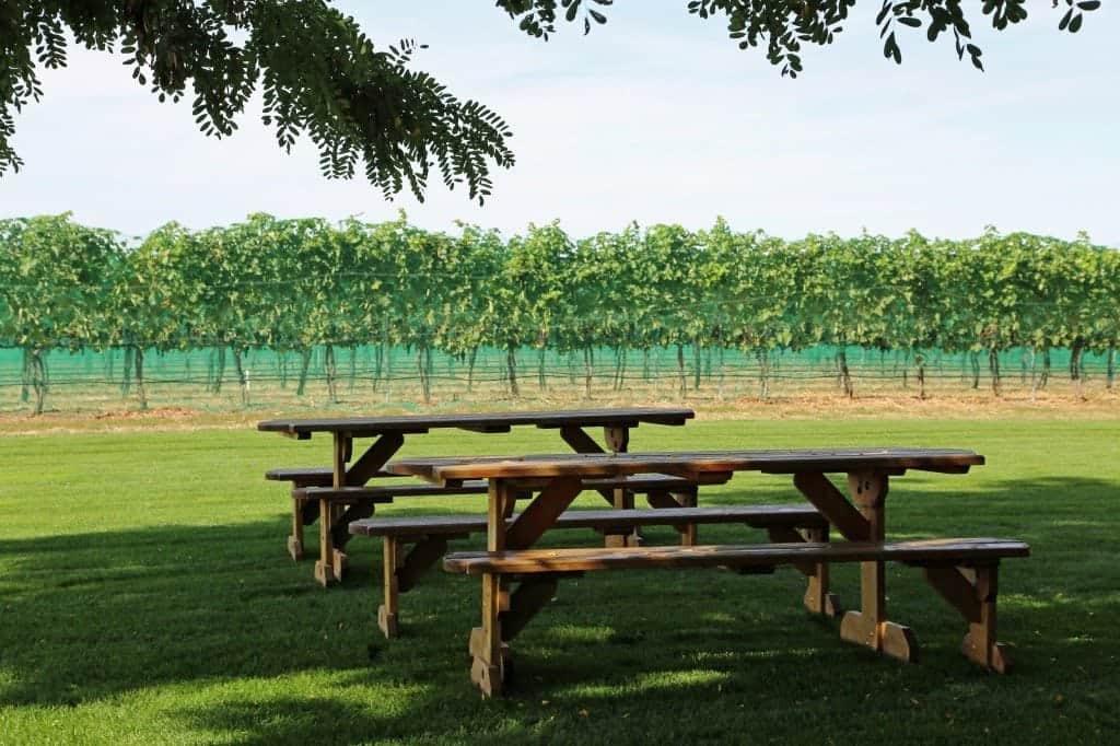 picnic area at Walla Walla Vinters
