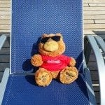teddy bear soaking up sunshine on the Carnival Sunshine