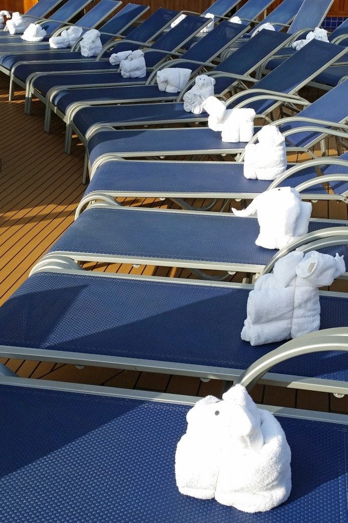 towel animals loungine around on the Carnival Sunshine