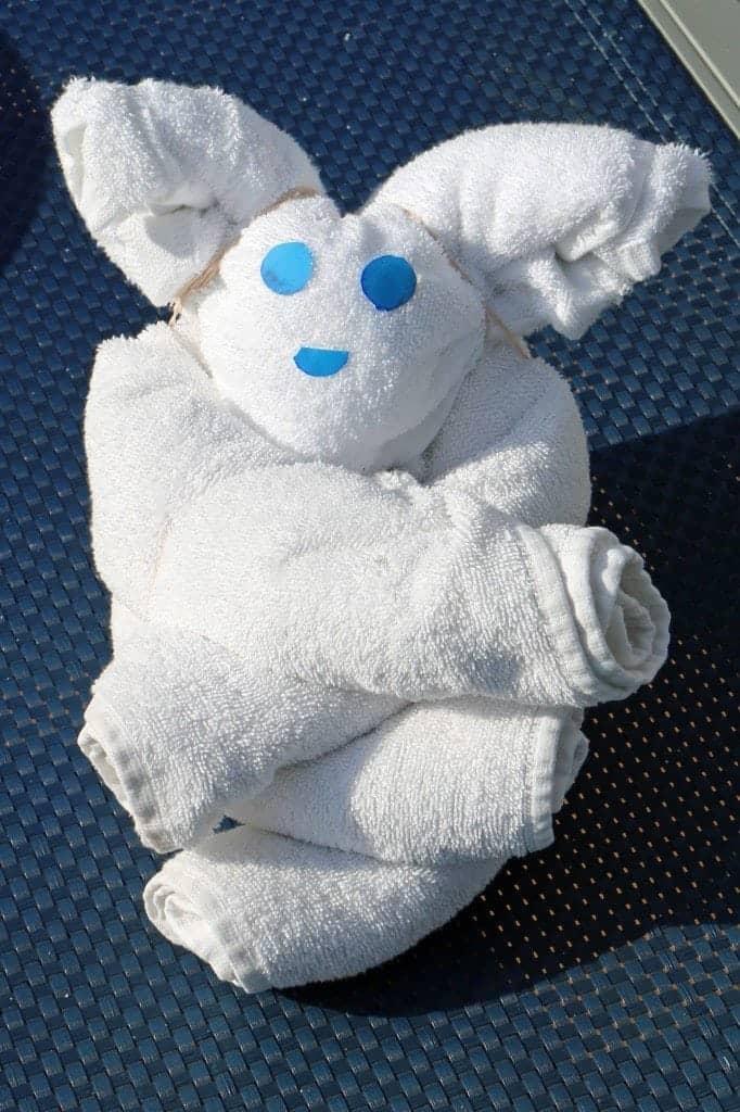 towel zoo on Carnival Sunshine