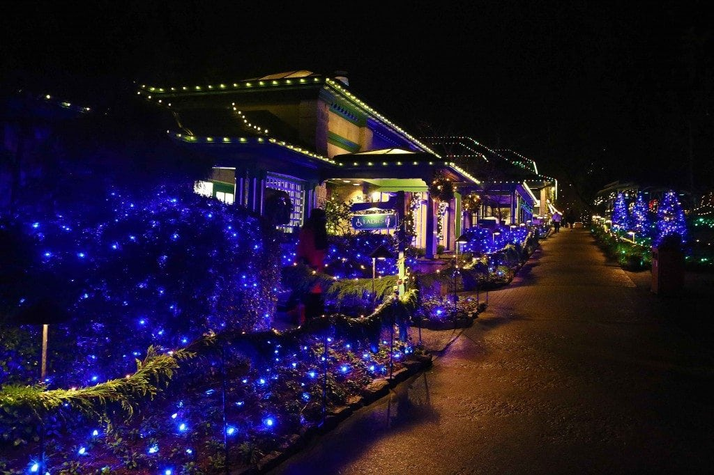 Blog Christmas Lights Buchart Gardens Victoria BC