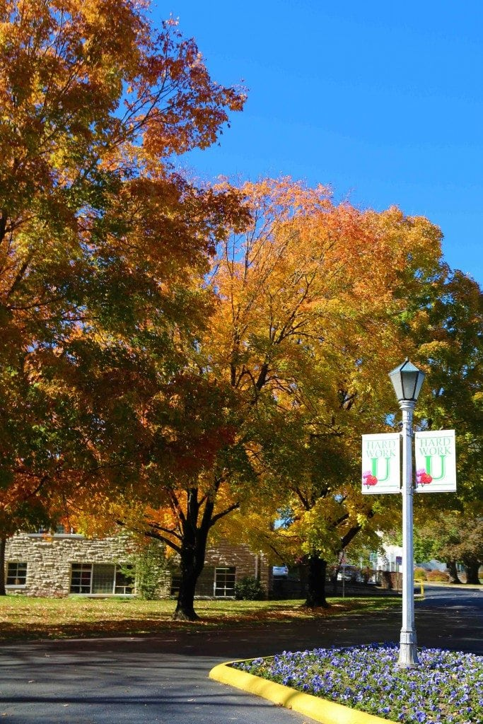 Blog Fall on the College of the Ozarks_edited-1
