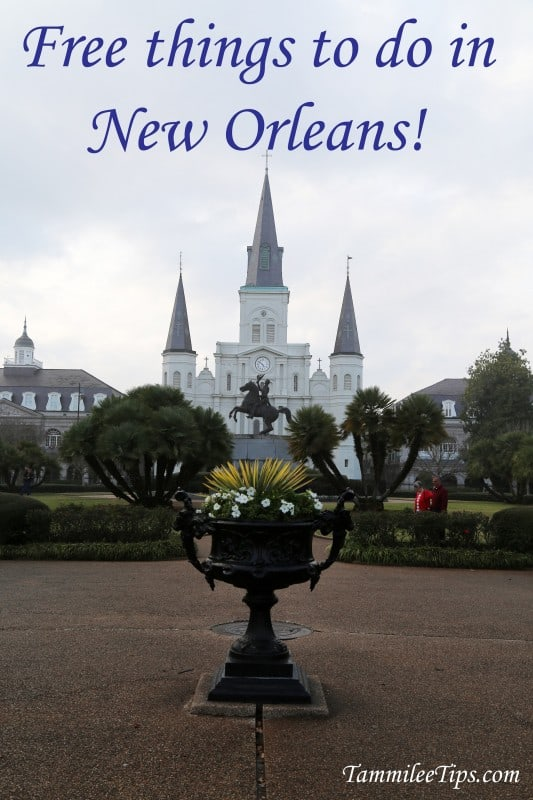 Free things to do in new orleans for Things to do in mew orleans