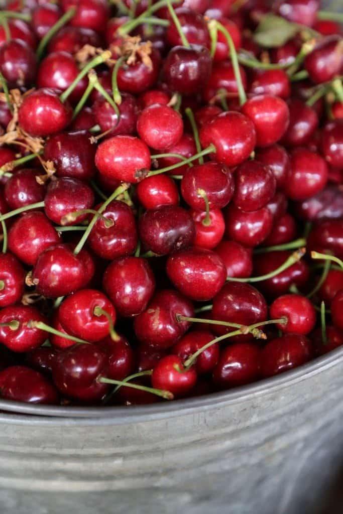 Fresh Cherries at Draper Girl Farms
