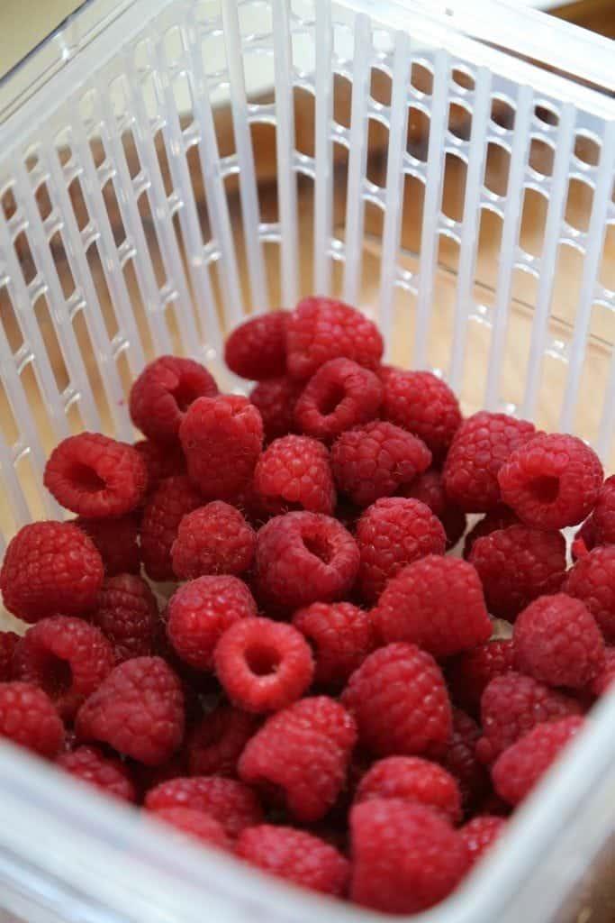 oxo raspberries