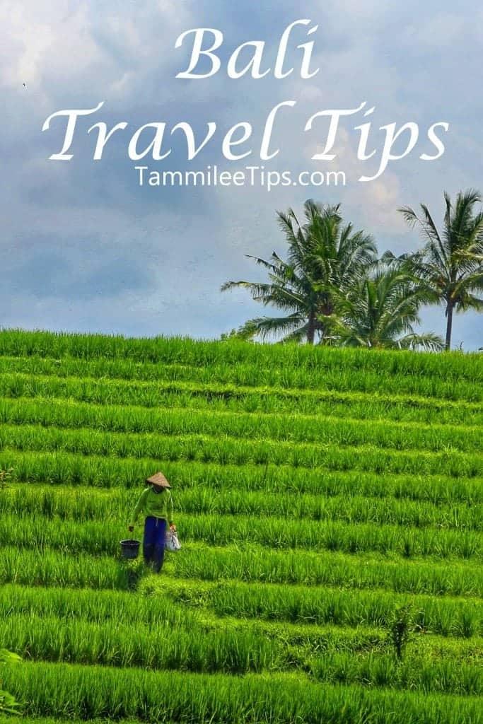 Bali Travel Tips Tammilee Tips
