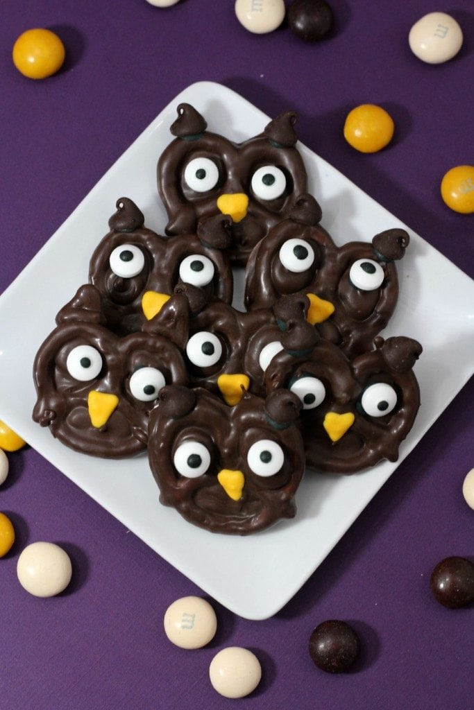 Chocolate Pretzel Owl Treats perfect for Halloween!