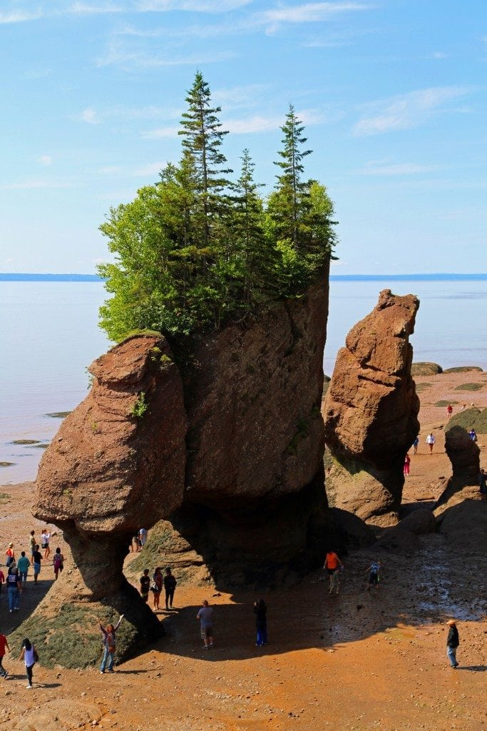 Looking down from the observation deck at Hopewell Rocks New Brunswick Canada