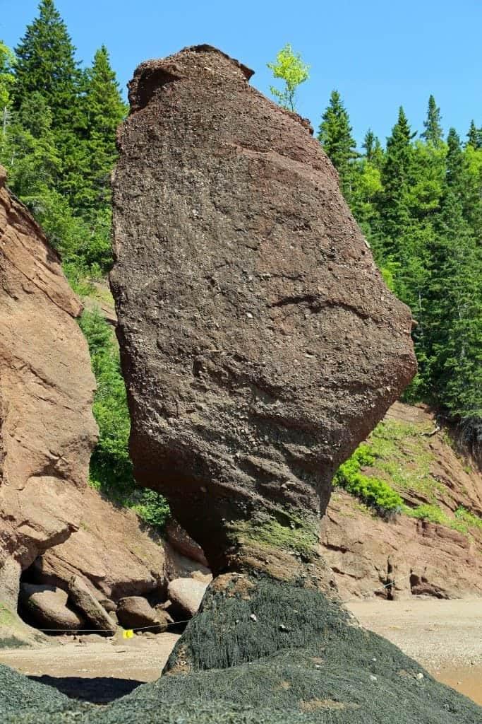 Rock formation on the sea floor Hopewell Rocks New Brunswick