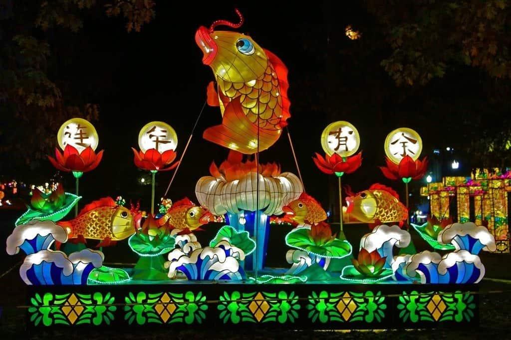 Fish-at-Chinese-Lantern-Festival.jpg