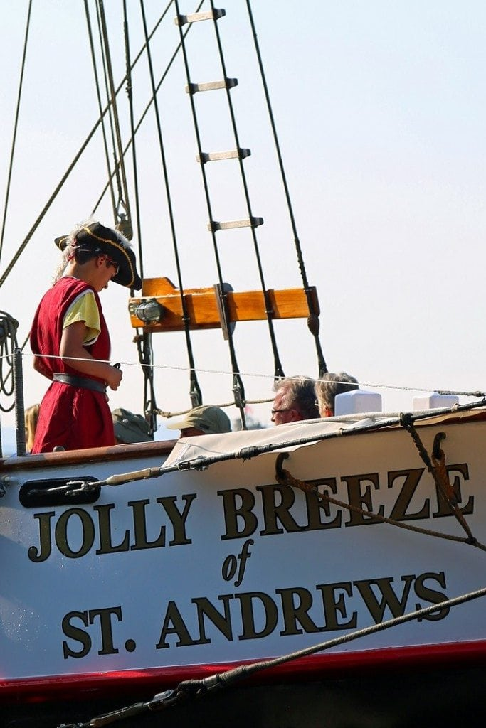 Pirate on the Jolly Breeze