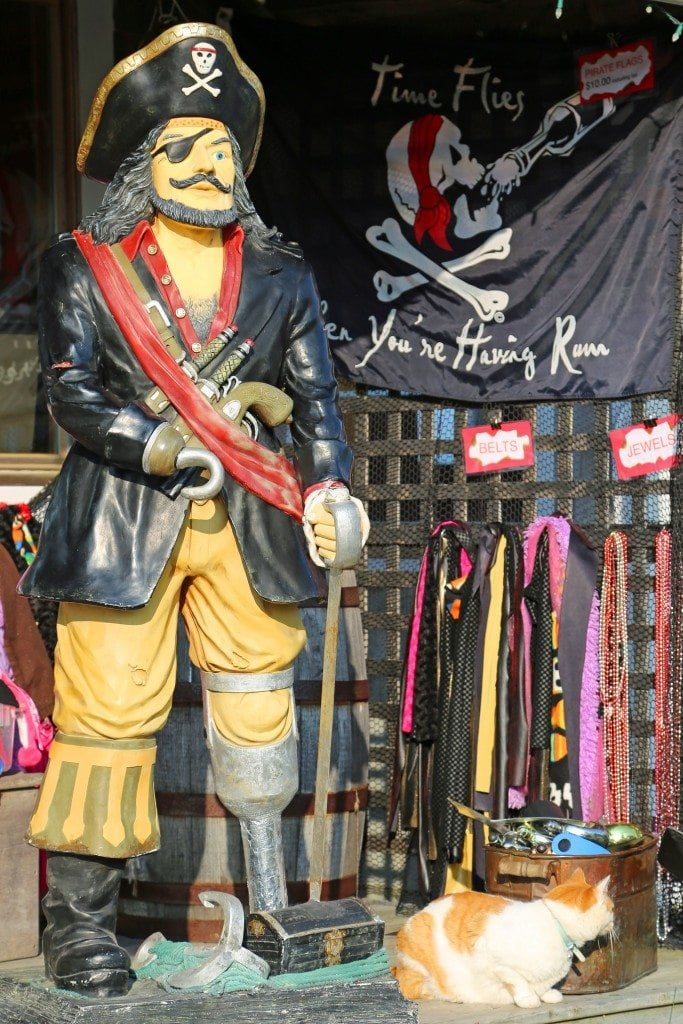 pirate dress up at the jolly breeze