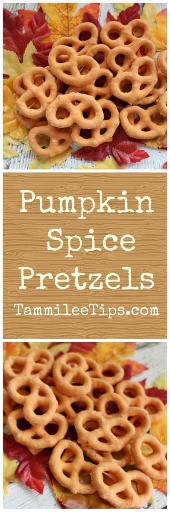 Pumpkin Spice Pretzel Recipe! The perfect fall snack recipe that is so easy to make.