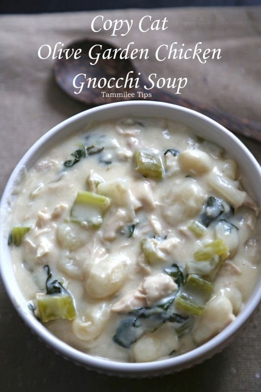 Copy Cat Olive Garden Chicken Gnocchi Soup Recipe Tammilee Tips